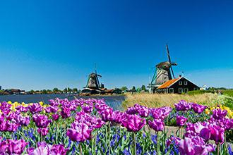 Dutch Country