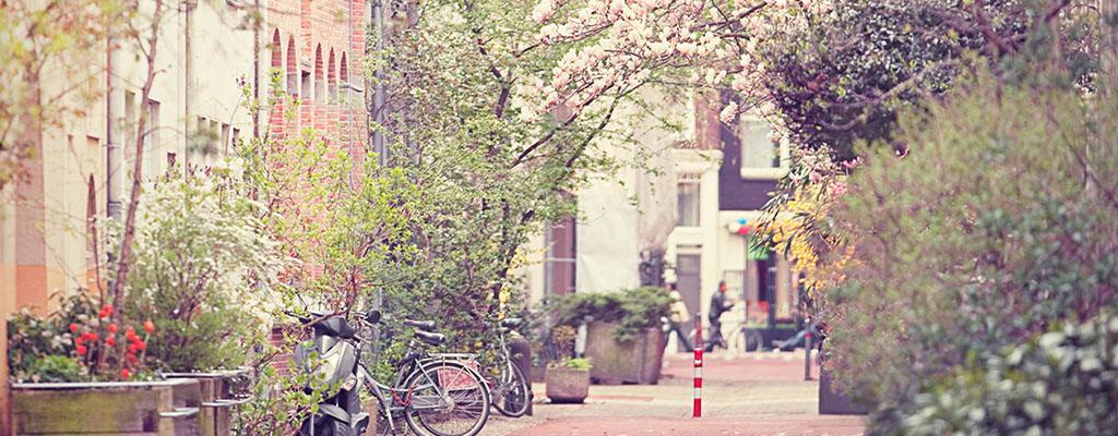 Het weer - Lente in Amsterdam