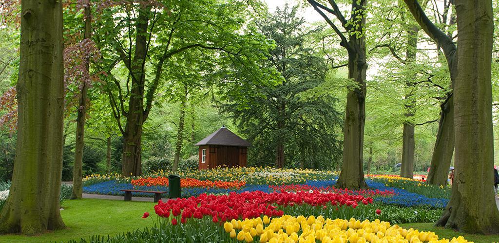 Keukenhof - Voorjaarsbloemen