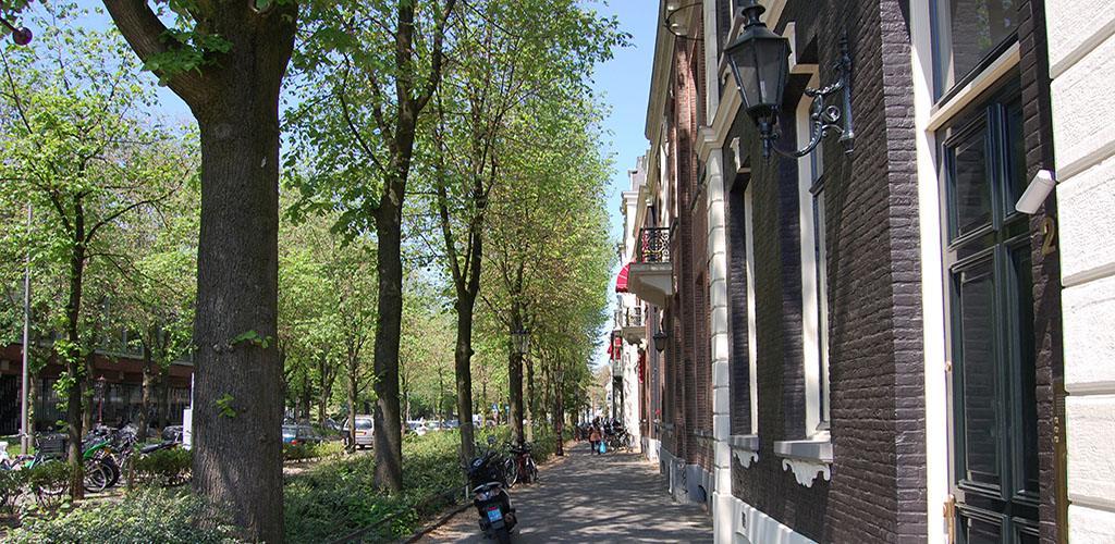 Pijp - Typische straat