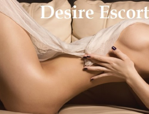 shaved pussy desire escorts amsterdam