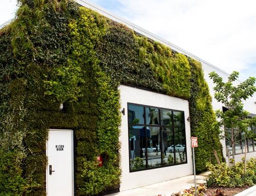 Livepanel Green Wall System